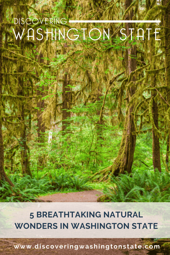 Have you planned your road trips around the unique sights you'll find along the way? If so, the breathtaking natural wonders in Washington state might be perfect for you.  #nature #washingtonstate